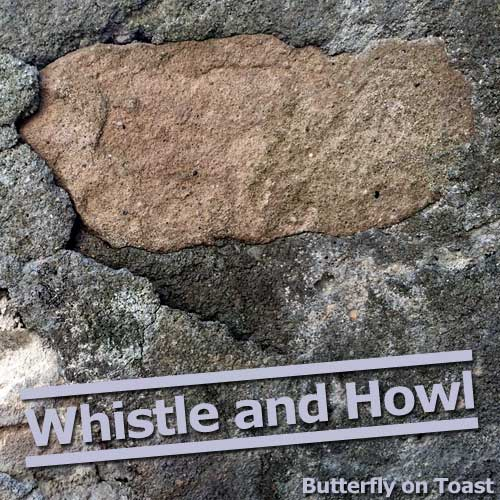 Whistle and Howl